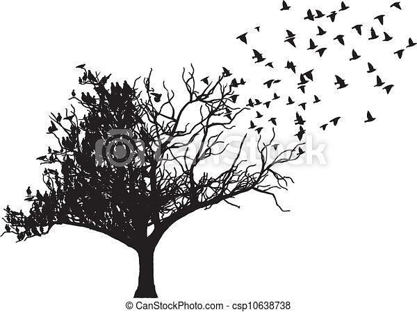 Vector de arte de las aves - csp10638738