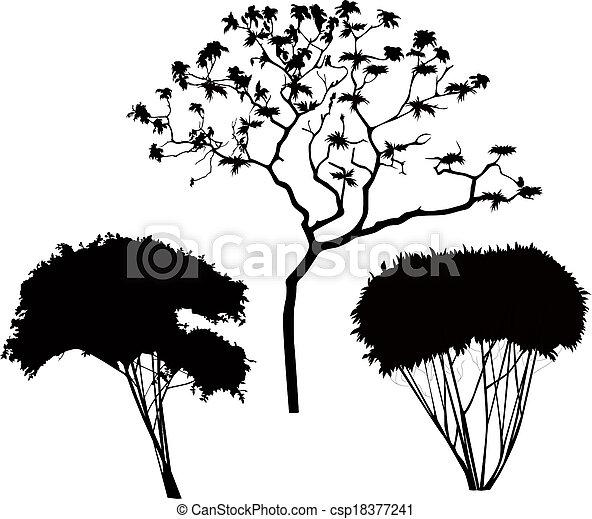 Árboles arbustos - csp18377241