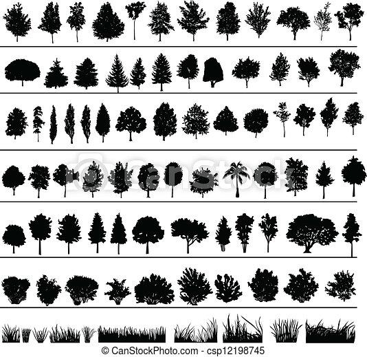 Árboles, arbustos, hierba - csp12198745