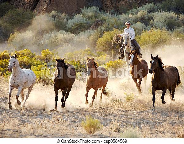A caballo - csp0584569