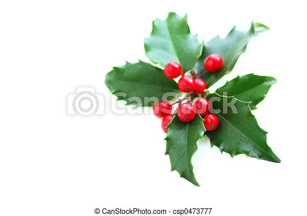 La santidad navideña - csp0473777