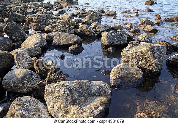 El derrame de petróleo en la costa marina, desastre ecológico - csp14381879