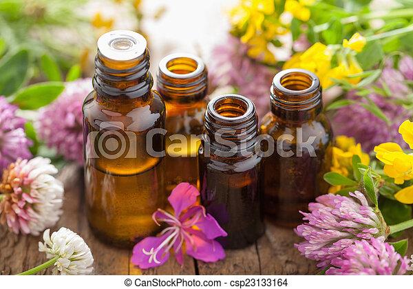 Aceites esenciales y hierbas de flores médicas - csp23133164