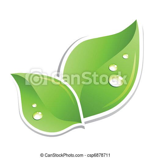Hoja verde con gotitas de agua. Vector - csp6878711