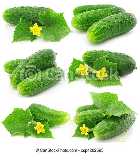 Frutas verdes de pepino con hojas aisladas - csp4262595