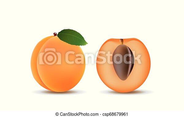 Fruta de albaricoque, entera y media - csp68679961