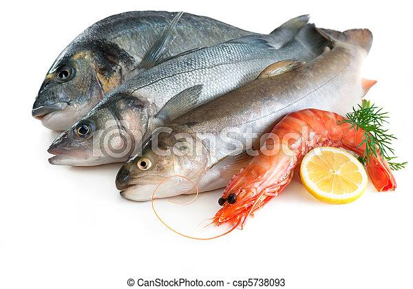 Comida marina - csp5738093
