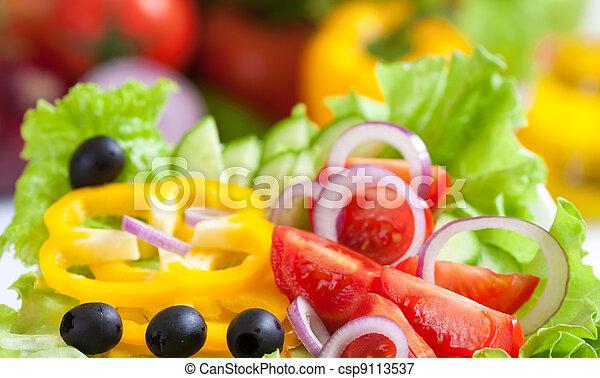 Comida sana y fresca ensalada vegetal - csp9113537