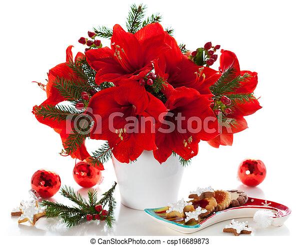 Un arreglo navideño de amaryllis - csp16689873