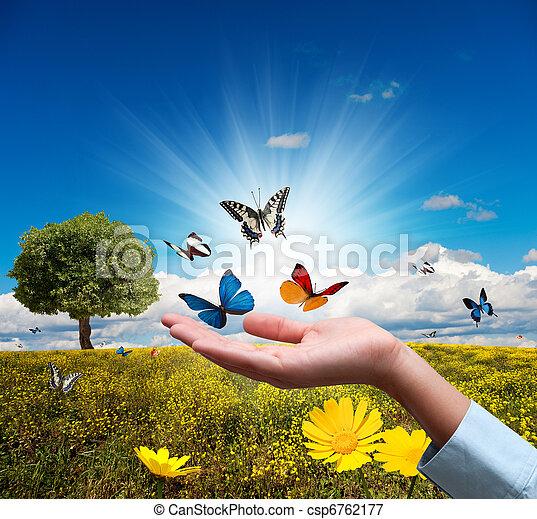 Proteger el ambiente - csp6762177