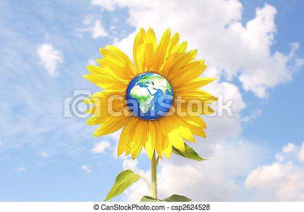 Medio ambiente - csp2624528