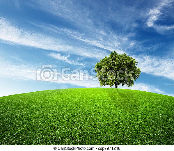 Medio ambiente verde - csp7971246