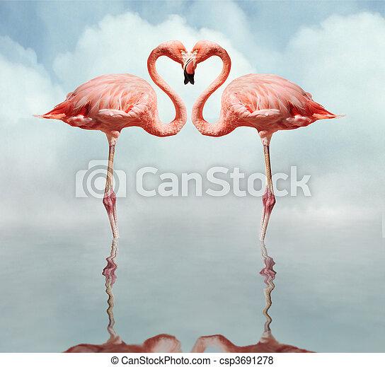 Pájaros de amor - csp3691278