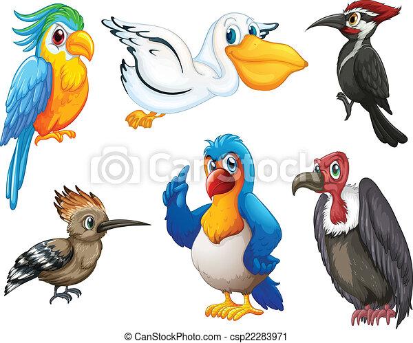Pájaros - csp22283971