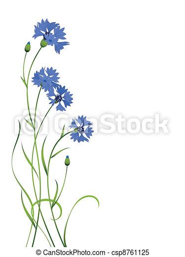 Patrón de ramos de flores azules aislado - csp8761125