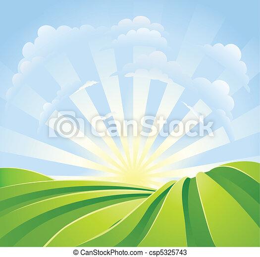 Campos verdes idílicos con rayos de sol y cielo azul - csp5325743