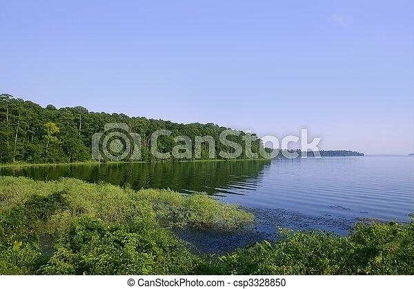 Un paisaje de lago azul en una verde vista del bosque de Texas, la naturaleza - csp3328850