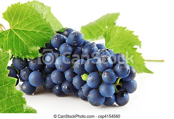Uva azul con hojas verdes frutas aisladas - csp4154560