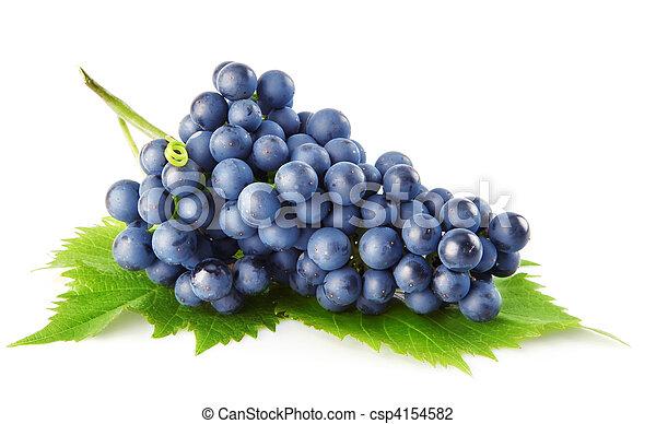 Uva azul con hojas verdes frutas aisladas - csp4154582