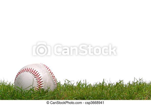 Béisbol en la hierba - csp3668941