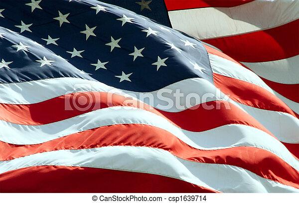 Bandera americana - csp1639714