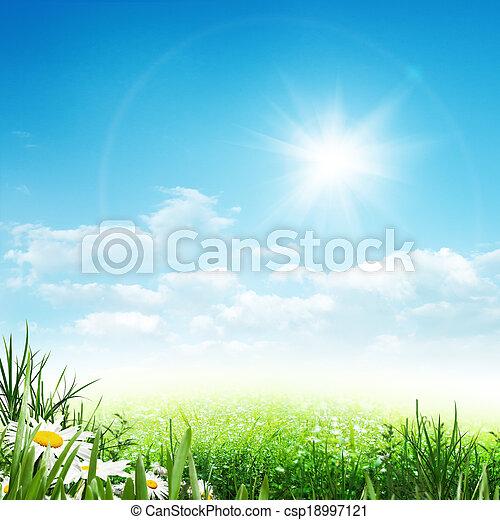 Verano de belleza, ambiente abstracto con flores margaritas - csp18997121