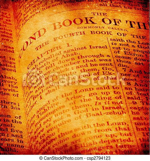 Santa Biblia - csp2794123