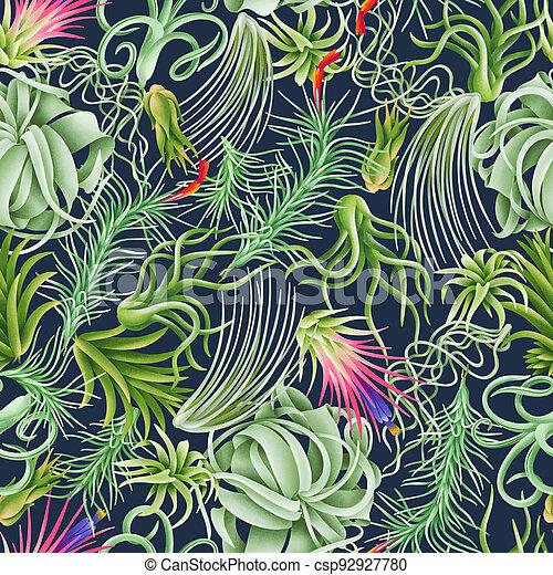 bosque, aire, patrón, plantas, ilustración, tillandsia, hermoso - csp92927780