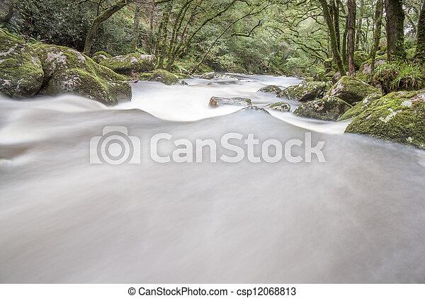 Un río que fluye rápido en Woodland, Dartmoor, Reino Unido. - csp12068813
