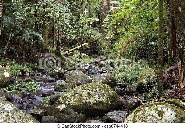 Bosque de lluvia - csp0744418