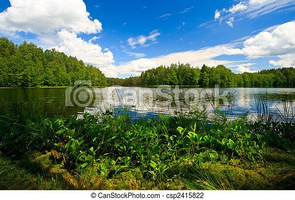 El lago Forestal - csp2415822