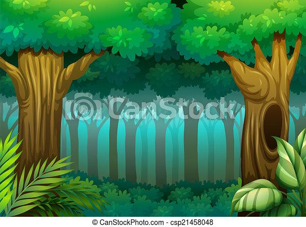 Bosque profundo - csp21458048