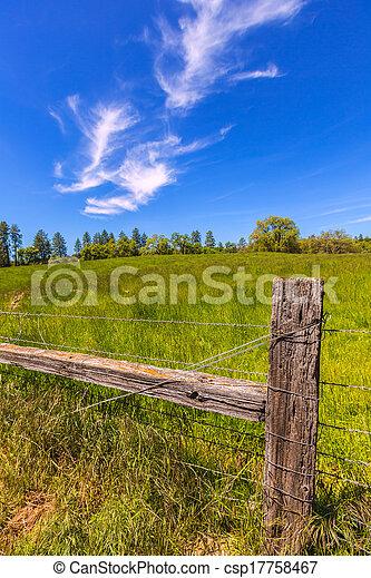 California Meadow Ranch en un día azul cielo primaveral - csp17758467
