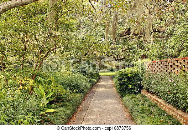 Camino del jardín - csp10873756