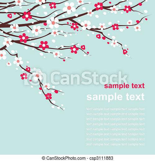 Carta con ramitas de cereza en flor - csp3111883