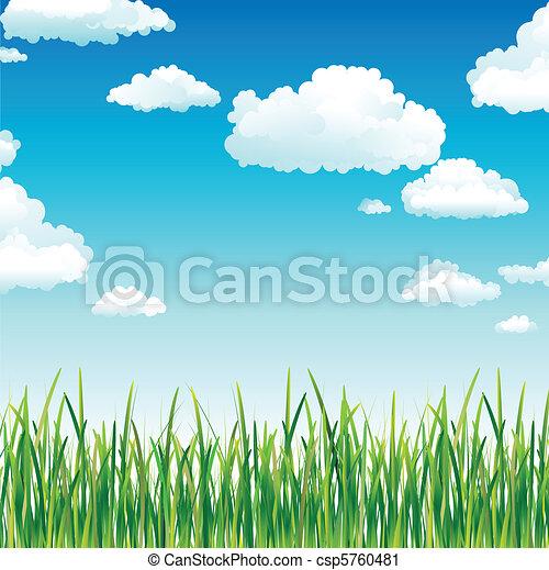 Nubes en el cielo sobre la hierba verde - csp5760481