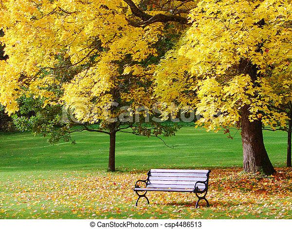 El parque en otoño - csp4486513