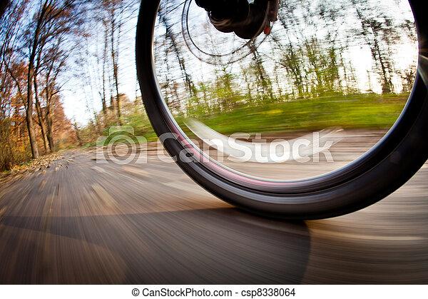 Cabalgando en bicicleta en un parque en un hermoso día de otoño y otoño - csp8338064