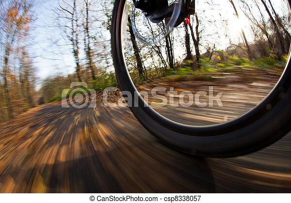 Cabalgando en bicicleta en un parque en un hermoso día de otoño y otoño - csp8338057