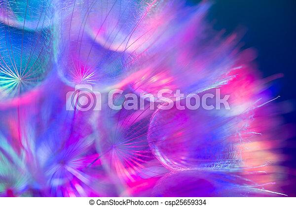 Colorido suelo pastel, vívida flor de diente de león abstracto - csp25659334