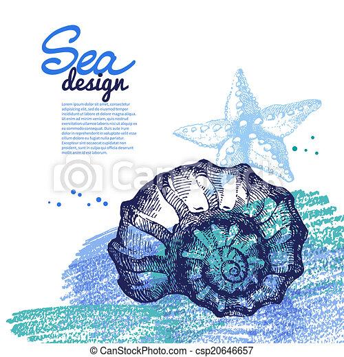 Conchas marinas. Diseño náutico marino. Dibujo a mano y - csp20646657