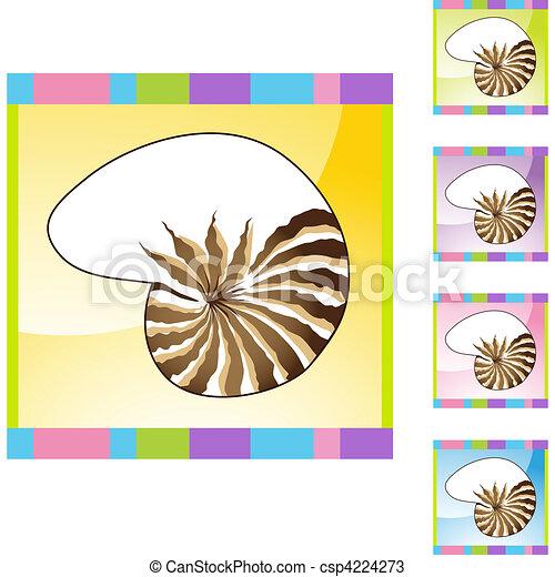 Concha de mar - csp4224273