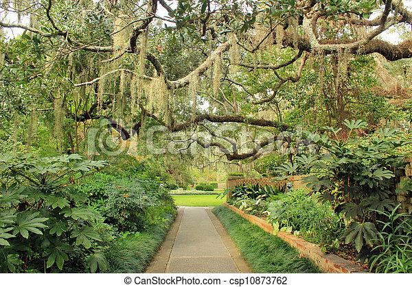 Concreto sendero del jardín 5 - csp10873762