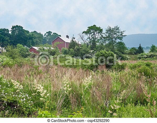 Condado Rural Sussex - csp43292290