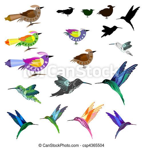 Pájaros listos - csp4365504