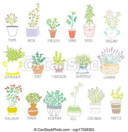 Hierbas y especias puestas en ollas con ilustraciones de flores - csp17558363