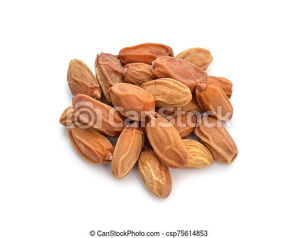 conocido, comúnmente, neem, nimtree, lilac., azadirachta, fruta, indica, indio, leaves., aislado, o - csp75614853