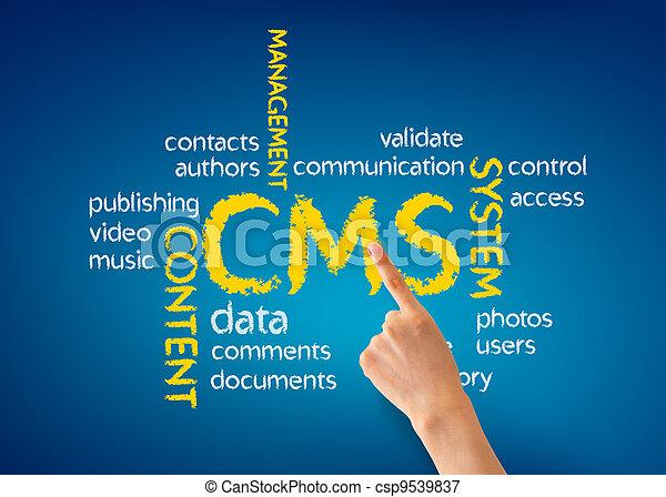 Sistema de gestión contenido - csp9539837