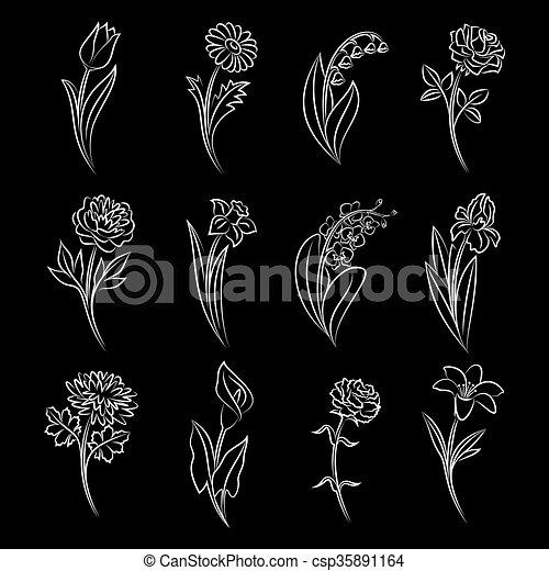 La colección de flores esbozadas. - csp35891164