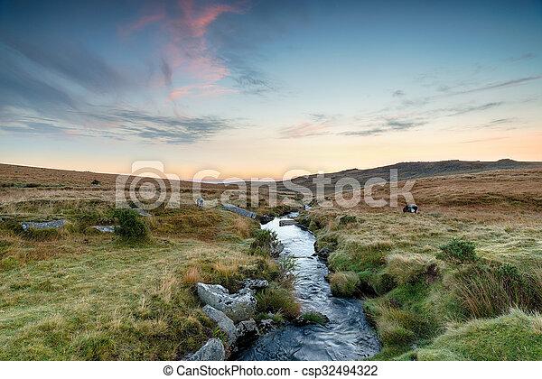La corriente de Dartmoor - csp32494322